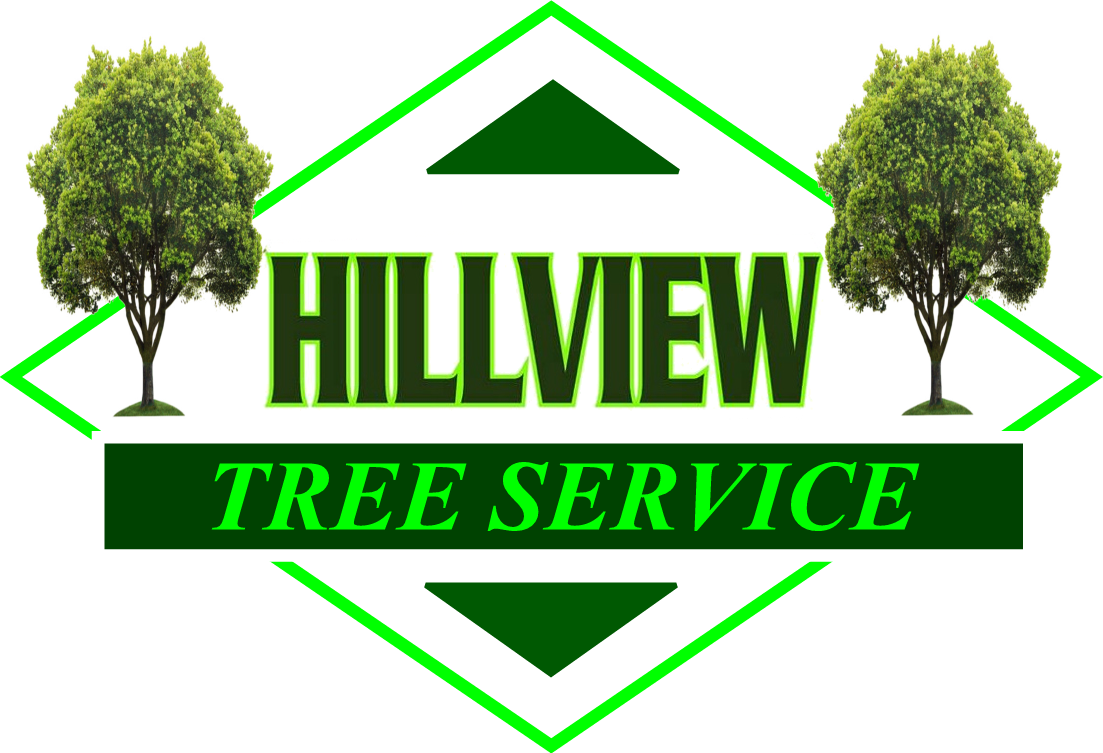 Southington, CT Tree Removal Service